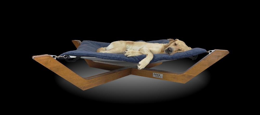 Labrador Sly im Hundebett Doxx Lounge