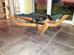 Hundebett Schweiz, Hund Aargau, Hundemöbel schöner Wohnen, Einrichtung mit Hund