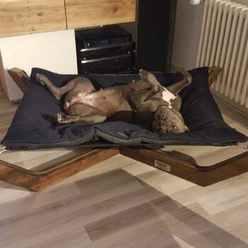 Schlafplatz Hund, Hund und Entspannung, Hundeliege